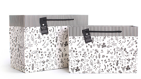边框条纹个性化妆品白卡纸袋定制